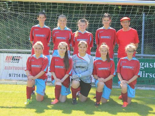 TSV Ebenhausen I